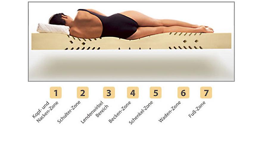 7-Zonen-Matratze aus Kaltschaum Einteilung