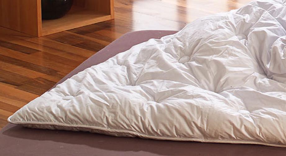 Microfaser-Leicht-Bettdecke Wiesental Allergie