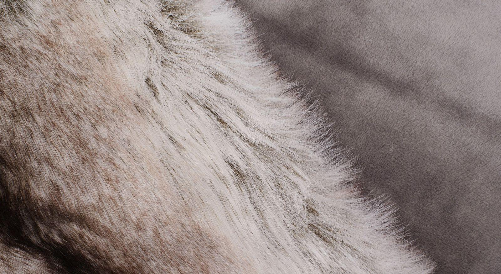 Moderne Felldecke Schlittenhund mit grauer Kehrseite