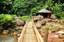 Bambus Brücke