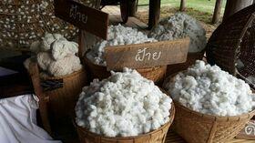 Baumwolle Verkauf Rohware