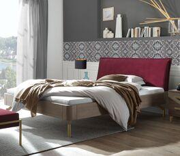 Bett Quinovia mit hochwertigem Eichenholzrahmen