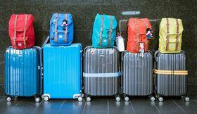 Bettwanzen im Koffer bei Reisen