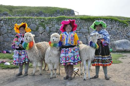 Füllmaterial Alpakas Peru