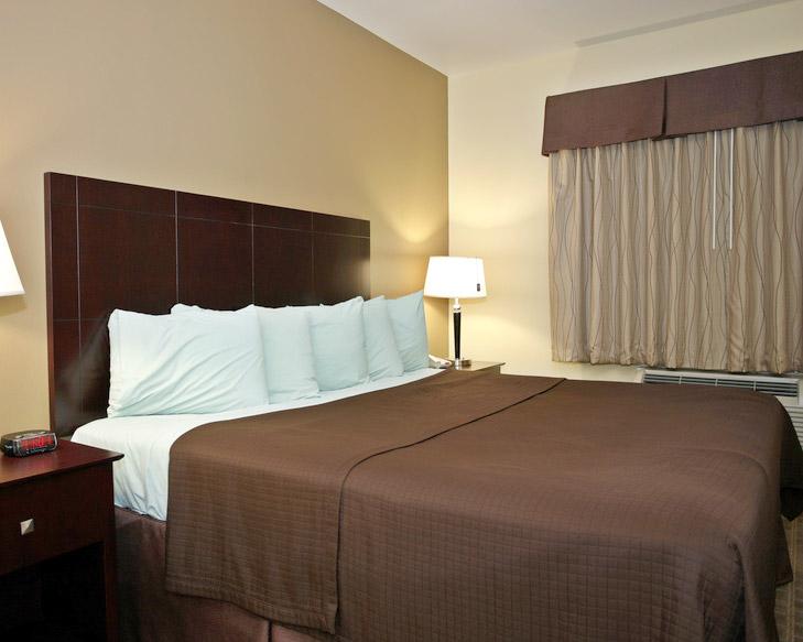 Teppichboden dunkle Wand grünes Bett