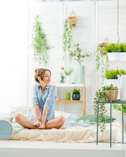 Dank Neuerer Studien Weiß Man Allerdings, Dass Manche Gewächse Ganz  Hervorragend Ins Schlafzimmer Passen. Die Immergrünen Sorten Wirken  Regulierend Auf Das ...
